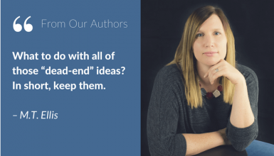 The Lightbulb Moment: Turning an Idea Into a Novel