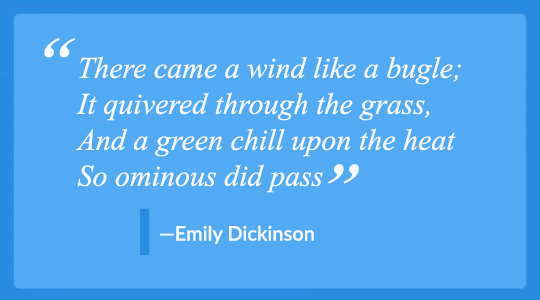 How do I write a poem? Example: Emily Dickenson,